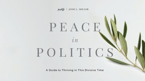 Peace in Politics