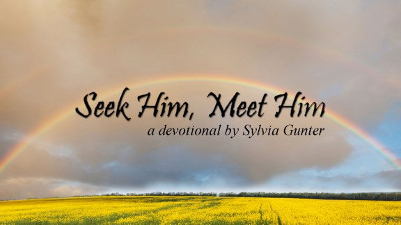 Seek Him, Meet Him